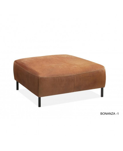 Bonanza hocker 1